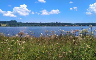 Sortie 11 Août Lac du Bouchet